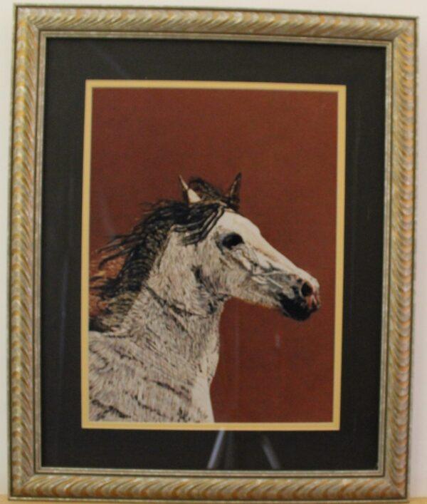 Arabian Horse 2